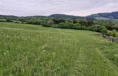 Meadow, pasture, Sale, Zubák