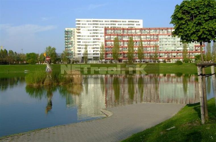 1-izb. byt, Prenájom, Bratislava - Nové Mesto - Tomášikova - Kuchajda, LAKE SIDE, IBM, POLUS..