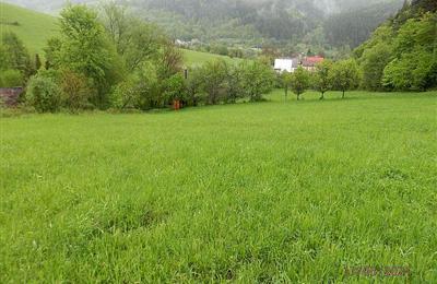 Grundstück für Einfamilienhäuser, Verkauf (Angebot), Brvnište - Brvnište