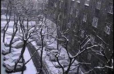 Dobrovskeho ulica.jpg