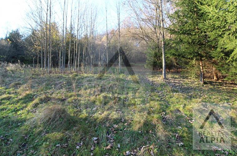 Meadow, pasture, Sale, Dlhá nad Kysucou