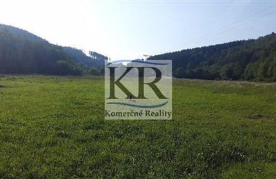 Grundstück für Einfamilienhäuser, Verkauf (Angebot), Drietoma